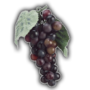 Icon grapes.png