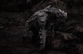 DS 3.png