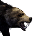 Icon pet Bear Alpha.png