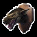 Aardwolf Trophy