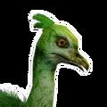 Icon baby Junglebird.png
