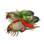 Icon spiced grub.png