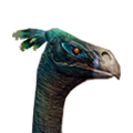 Icon pet Ostrich Red.png