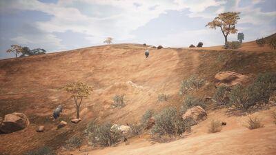 East Savanna Rhino In-game.jpg