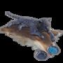 Emberlight pet saber.png