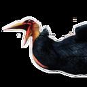 Siptah Pelican Carcass