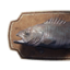 Icon groper trophy.png