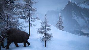 Biomes Snow Scene.jpg