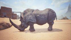 King Rhino 1948.jpg