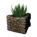 Decorative Planter (Aloe)