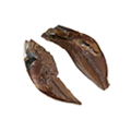 Icon driedFish.png