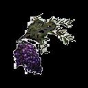 False Mandrake