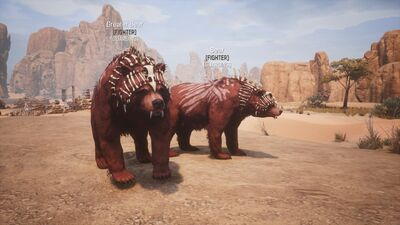Pet pict bear bearalpha 1.jpg