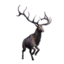 Icon Stuffed Elk.png