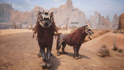 Pet pict wolf wolfalpha 1.jpg