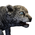 Icon baby Sabertooth.png