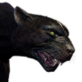 Icon pet Panther.png