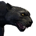 Icon pet Panther Alpha.png