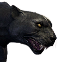Greater Panther
