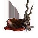 Antelope Head