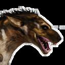 Greater Aardwolf