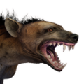 Icon pet HyenaSpotted.png