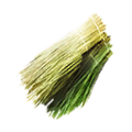 Icon plant fiber.png
