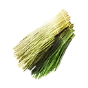 Plant Fiber