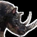 Killer Black Rhinoceros