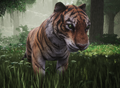 TigerPet1.png