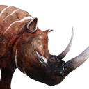 Savage Grey Rhinoceros