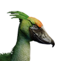 Icon pet JungleBird Green.png