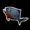 令人倒胃口的鱼
