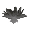 Icon grey lotus flower.png