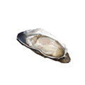 Icon cooked oyster.png