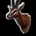 瞪羚头战利品