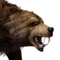 Icon pet Bear Brown.png