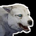 Frostwolf Cub