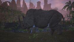 Rhino King 1.jpg
