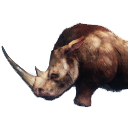 Siptah Rhinocerous Carcass