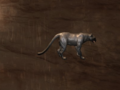 Pet Greater Panther.png