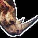 Siptah Rhinocerous