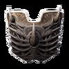 Dragonbone Shield