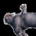 Grey Ape Carcass