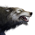 Icon pet Wolf.png