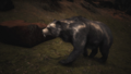Monstrous Bear.png