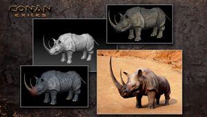 Rhinos 2.jpg