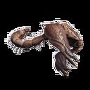 Scorpion Carcass