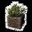 Icon PlantPot07.png