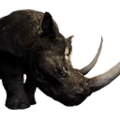 Icon pet RhinoPet Black.png